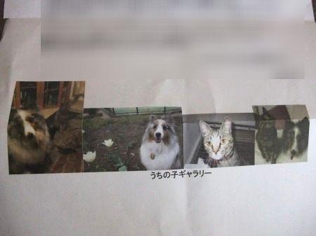 2011_0514_12.jpg