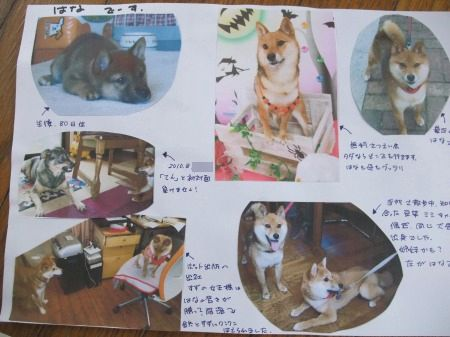 2011_0522_8.jpg
