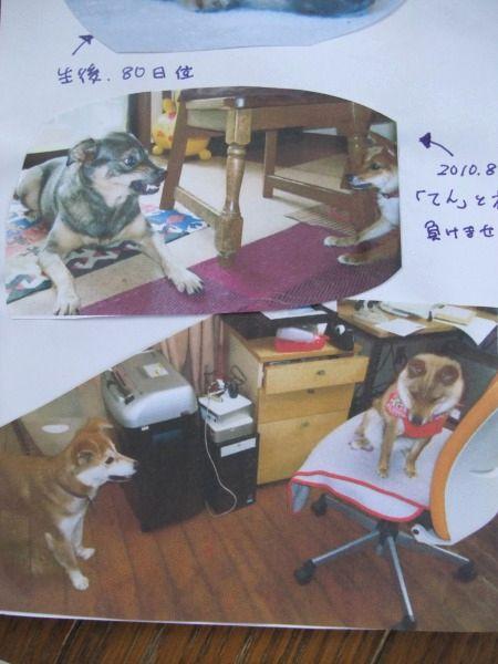 2011_0522_9.jpg