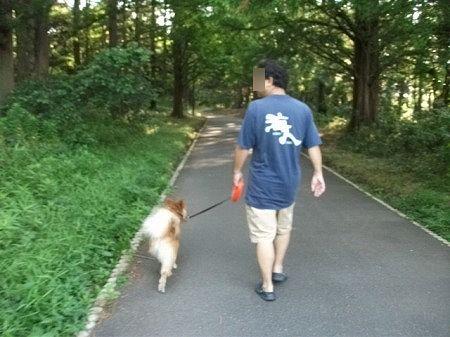 2011_0717_fuku_1.jpg