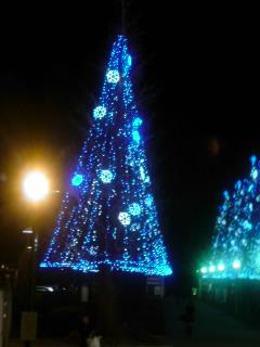 Chiristmas Tree?