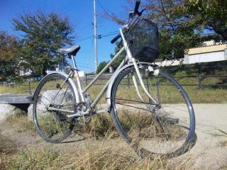 サイクリング(賀茂川)_2011-10-27