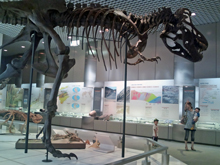 04_博物館
