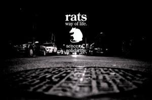 RAT-J.jpg
