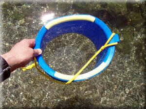 P610.5水中観察用バケツ