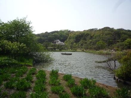 三渓園大池②