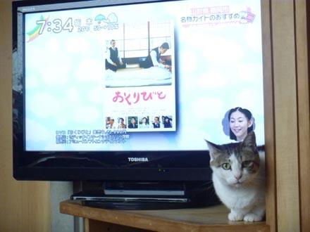 薄型テレビ ①