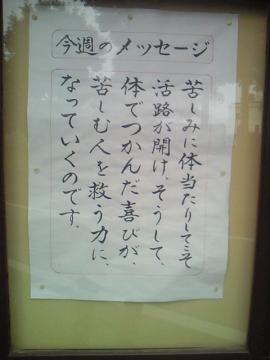 NEC_0367.jpg
