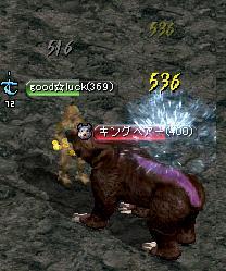 懲りずに熊熊