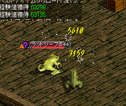 B1ねずみ 11.04