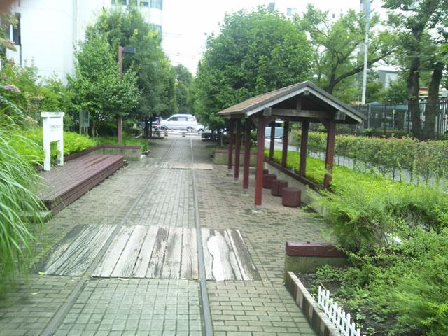 DSC_6084.jpg