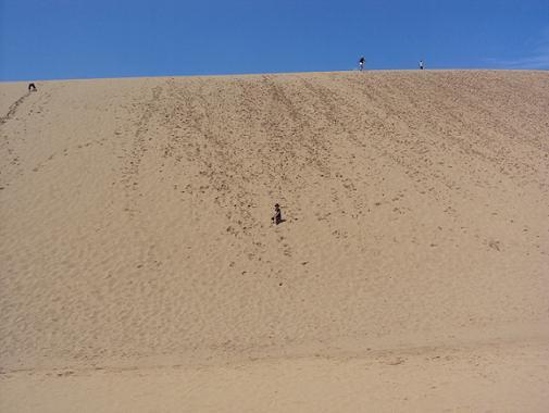 dune30aug2011.jpg