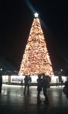 名古屋港のツリー