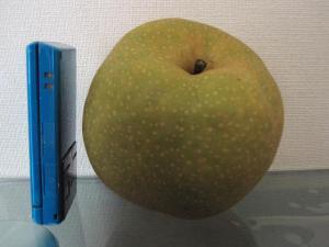 稲城の梨1