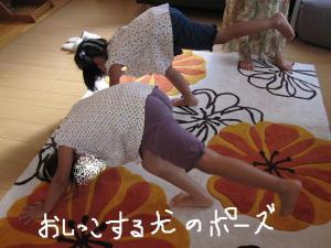 dogpose