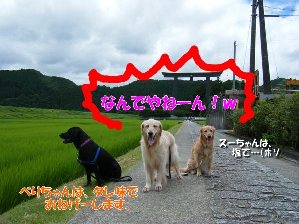 DSCF0002_20110726004158.jpg