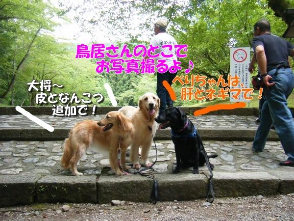 DSCF0003_20110726005139.jpg