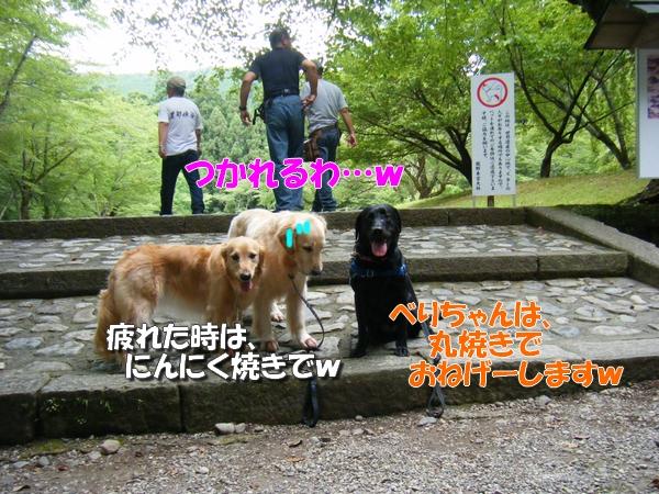 DSCF0004_20110726004157.jpg