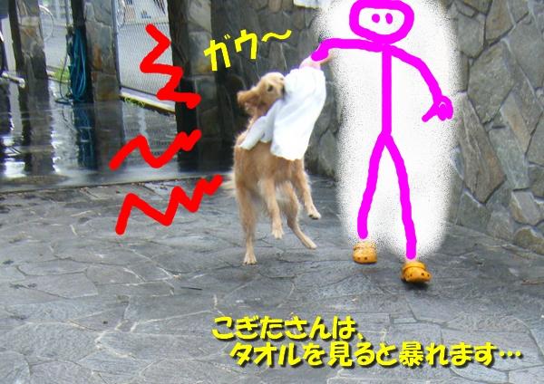 DSCF1001_20110709003556.jpg
