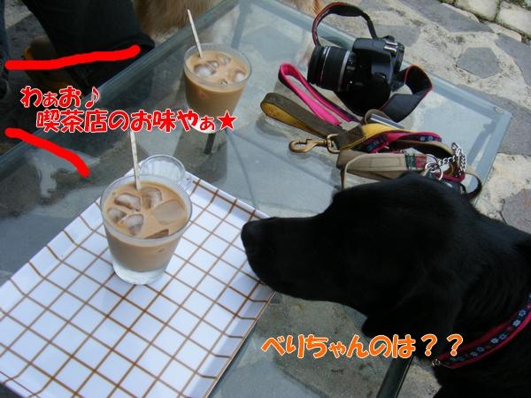 DSCF1033_20110709003629.jpg