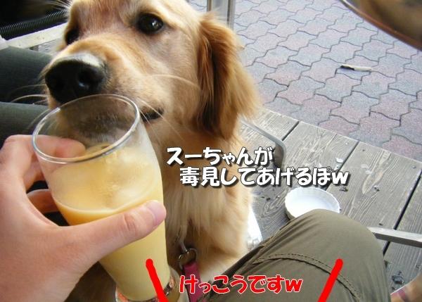 DSCF3004_20110712011138.jpg