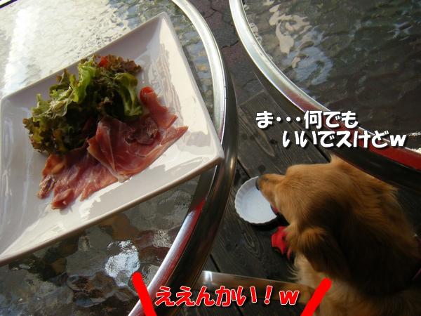 DSCF3009_20110712011137.jpg