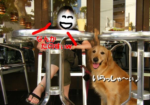 DSCF3013_20110712011137.jpg