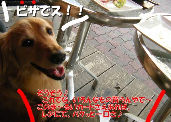 DSCF3025_20110712011135.jpg