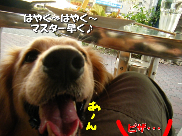 DSCF3034_20110712011222.jpg