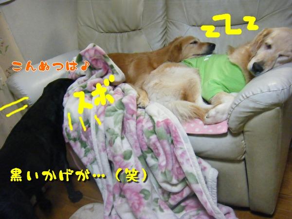 DSCF3083.jpg