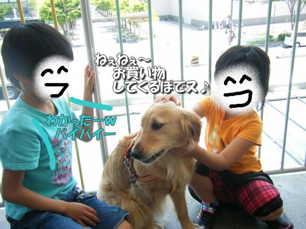 DSCF4023_20110530235821.jpg
