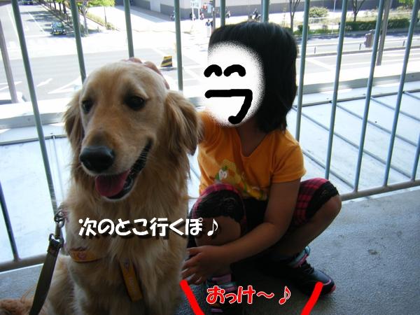 DSCF4026_20110529020105.jpg