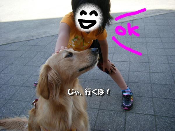 DSCF4059_20110526235656.jpg