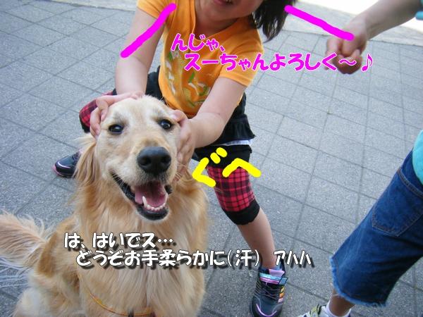 DSCF4060_20110526235656.jpg