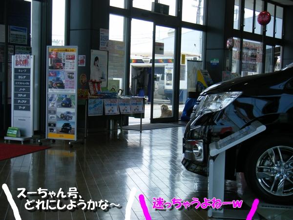 DSCF4064_20110523234948.jpg
