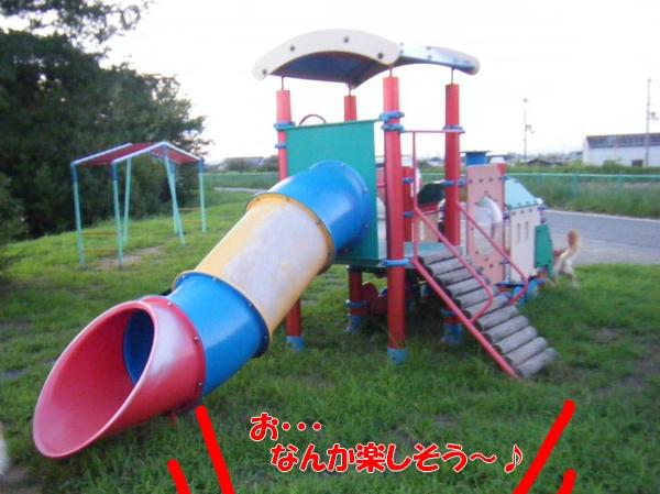 DSCF4136.jpg