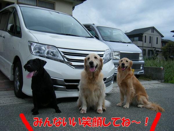 DSCF4215_20110920233626.jpg
