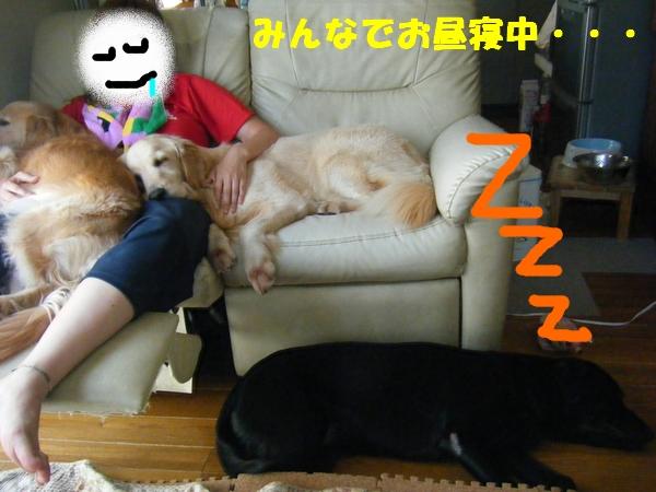 DSCF5010_20110814000147.jpg