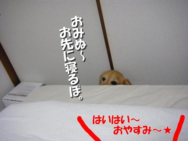 DSCF5016_20110715003341.jpg