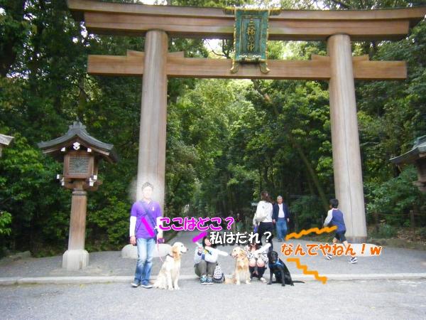 DSCF5049_20110519001356.jpg