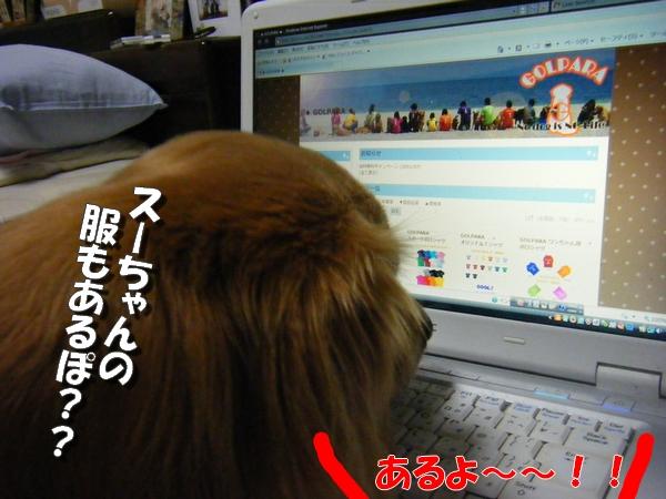 DSCF6002_20110730001310.jpg