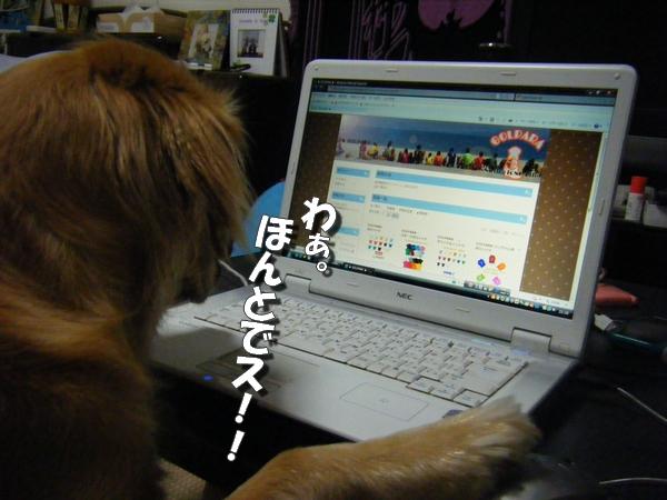 DSCF6004_20110730001309.jpg