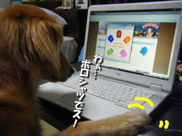 DSCF6006_20110730001309.jpg