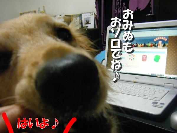 DSCF6019_20110730001405.jpg