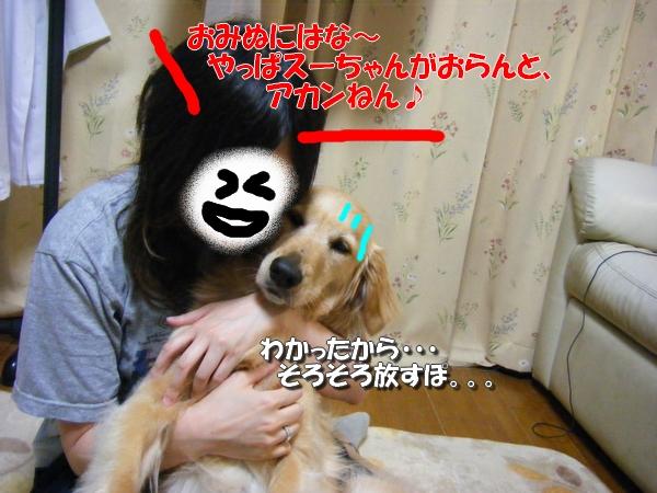 DSCF7003_20110614235810.jpg