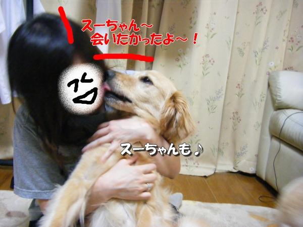 DSCF7004_20110614235809.jpg