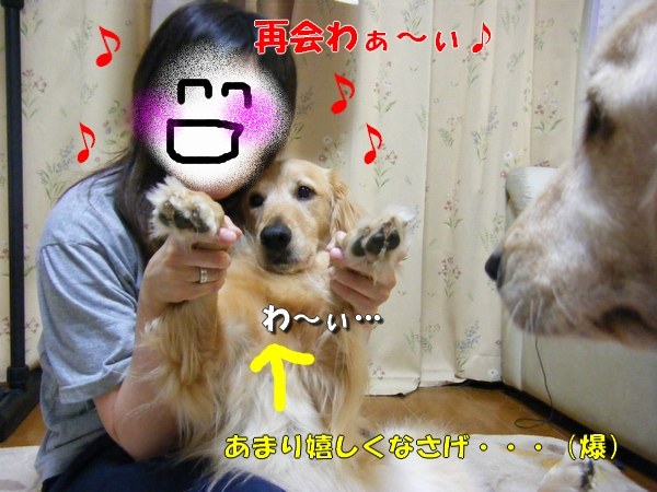 DSCF7008_20110611021714.jpg