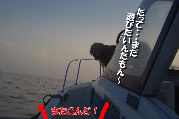 IMGP0057.jpg