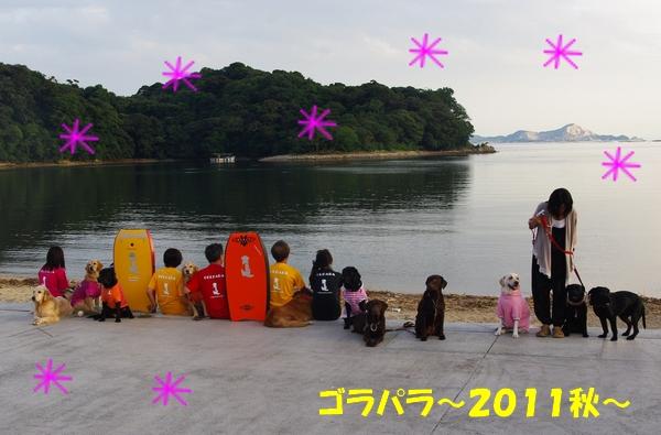 IMGP0158_20110930001939.jpg