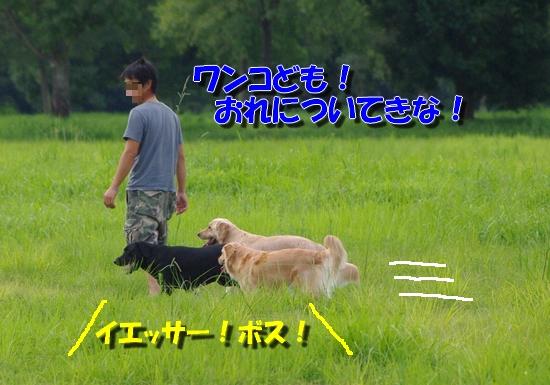 IMGP0663.jpg